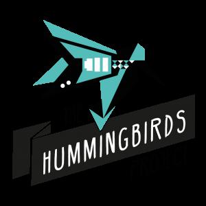 camille-simien-the-hummingbirds-project-faire-participer-des-artistes-etait-un-message-despoir-en-ces-temps-particulierement-tendus-interview